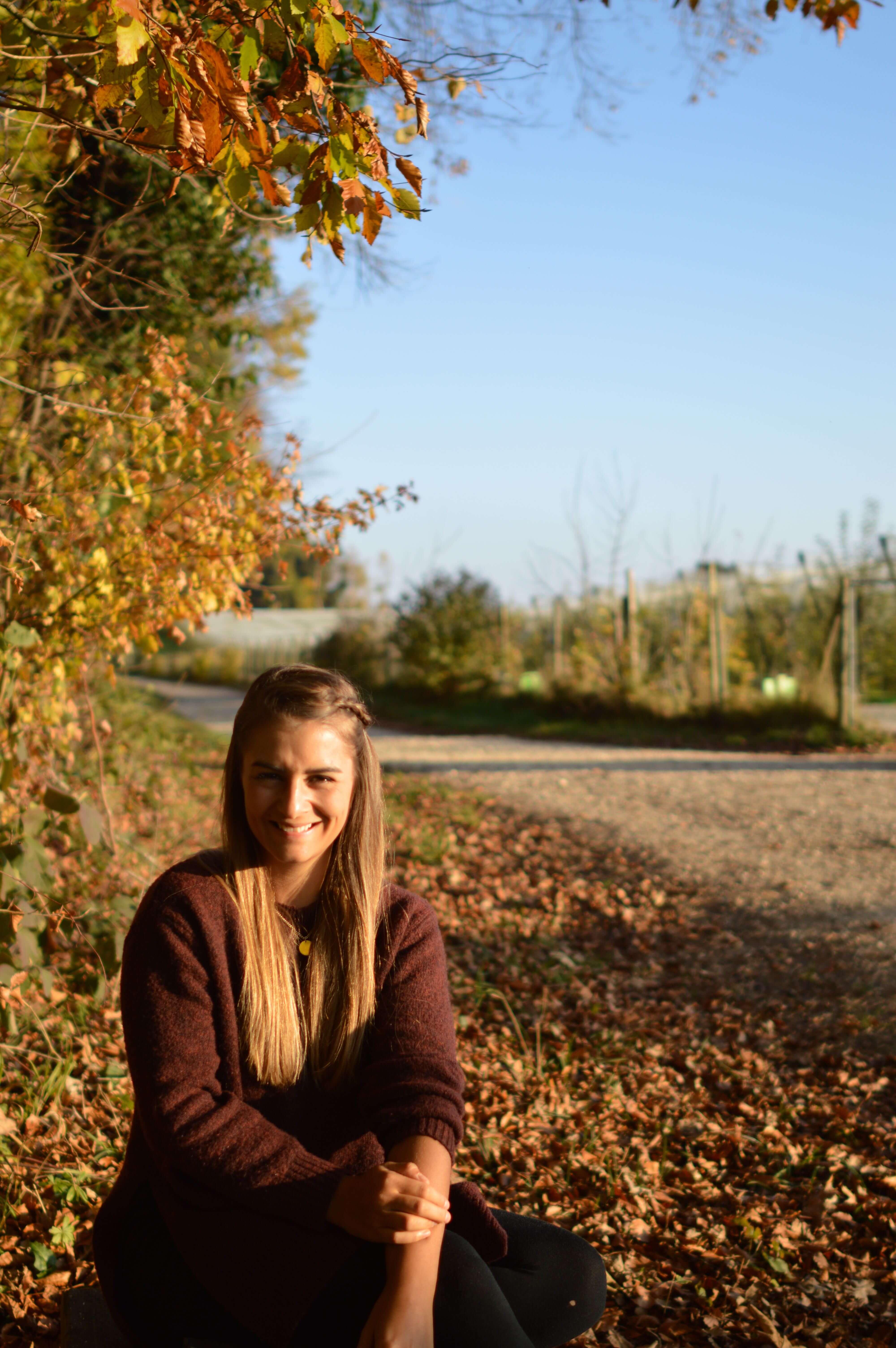 Blaetter-Laub-Herbst
