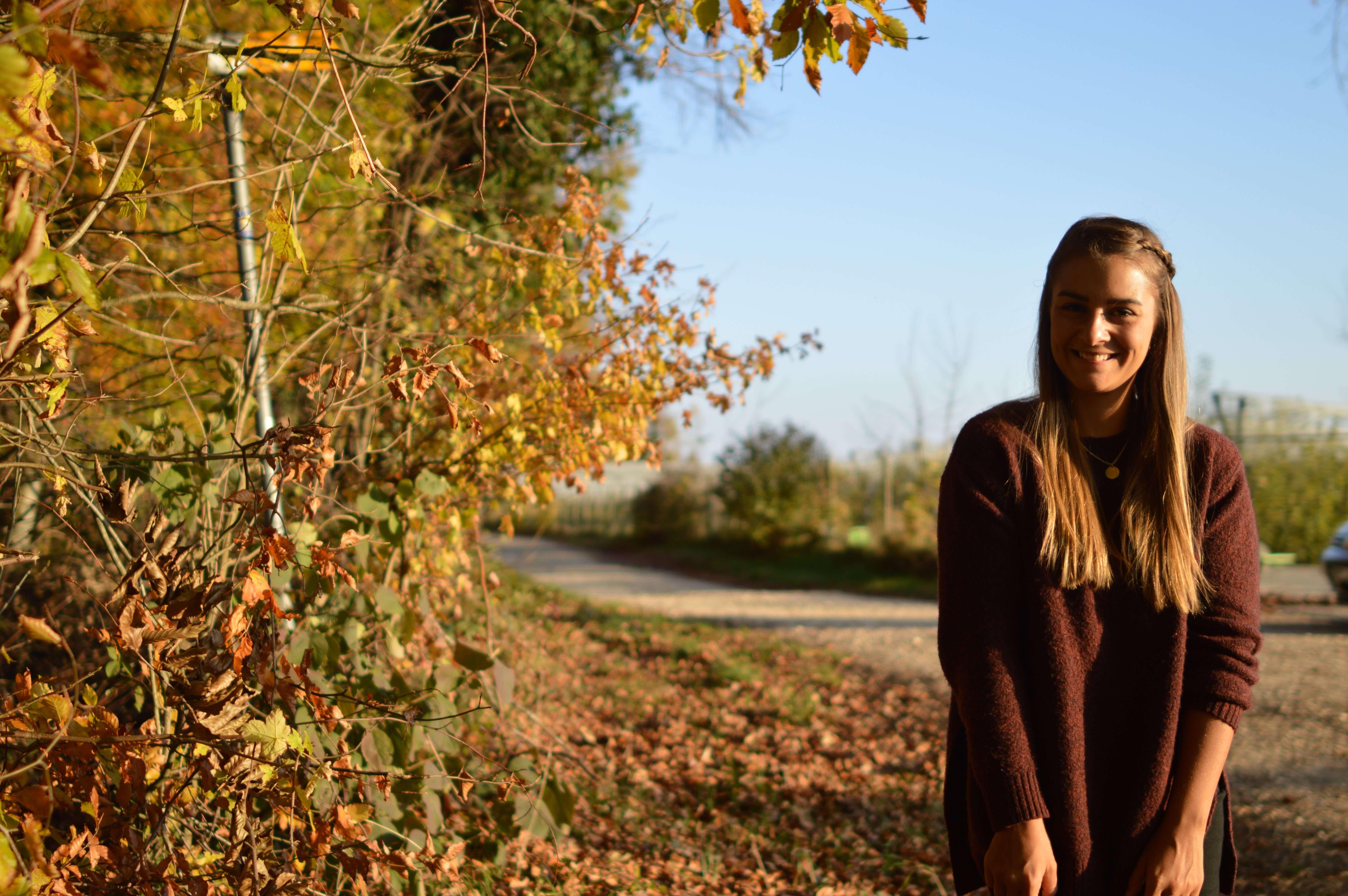 Herbst-bild-bodensee